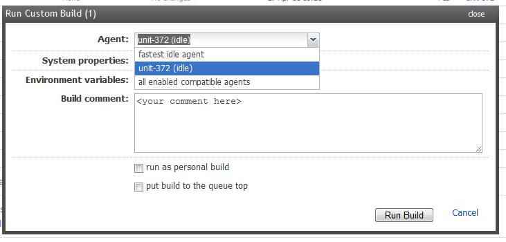 run custom build.PNG
