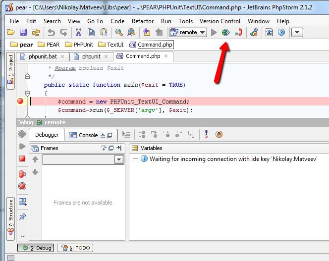 execute_remote_debug_run_configuration.png