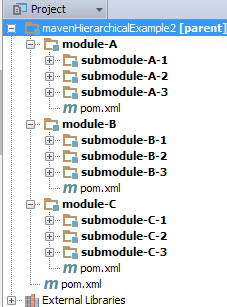 Project View with Module Groups.png