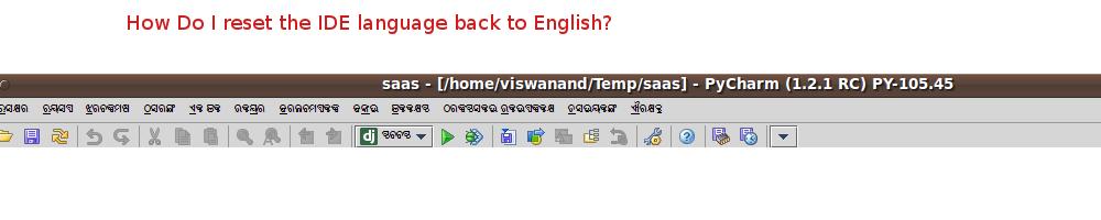 ide_language_setting.png